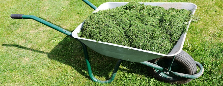 Subscriptions due for garden waste collections
