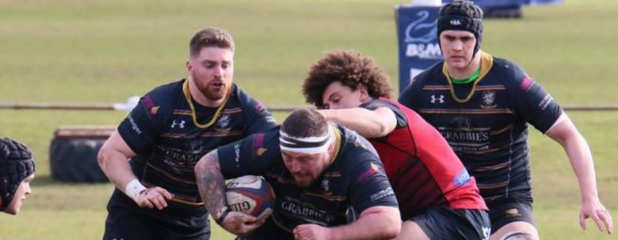 Plymouth Albion v Caldy