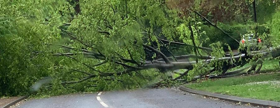 Storm Hannah causes travel disruption