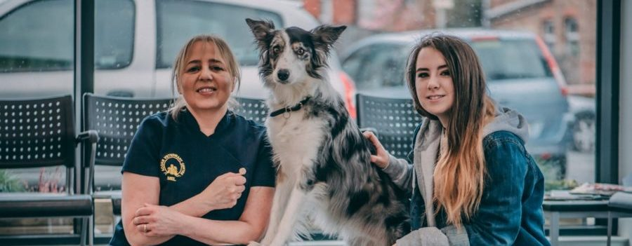 Dog takes top spot at Crufts after West Kirby vets save her life