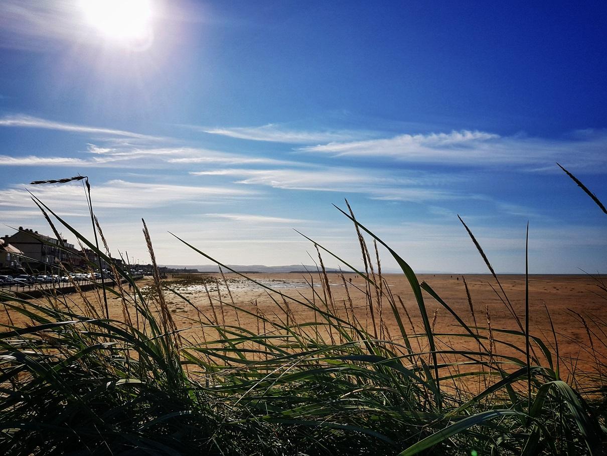 Grass at Hoylake beach